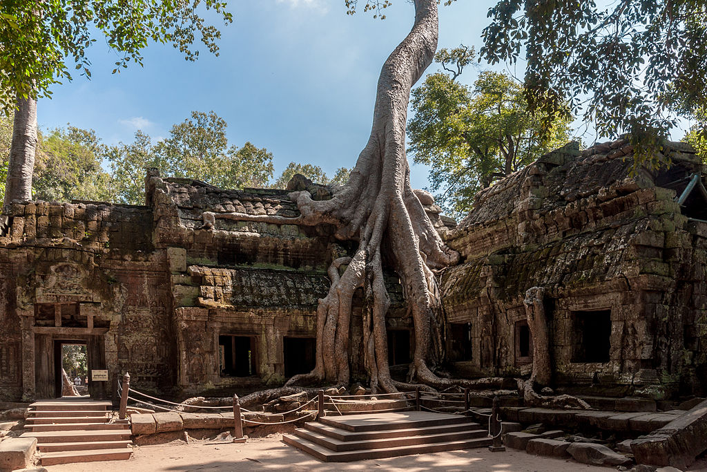 Photo by CEphoto, Uwe Aranas / CC-BY-SA-3.0 Published in the Wikimedia Commons: https://commons.wikimedia.org/wiki/File:Angkor_SiemReap_Cambodia_Tha-Prom-Temple-01.jpg
